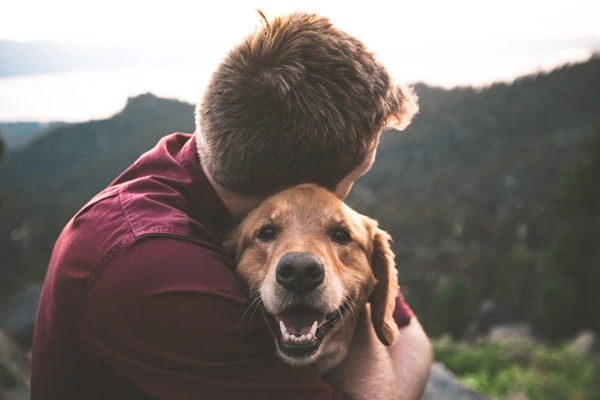 Person hugging a dog, forested mountains in the background